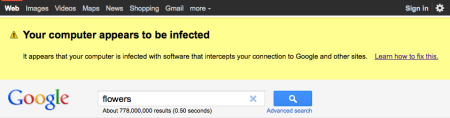 Google's Malware Warning